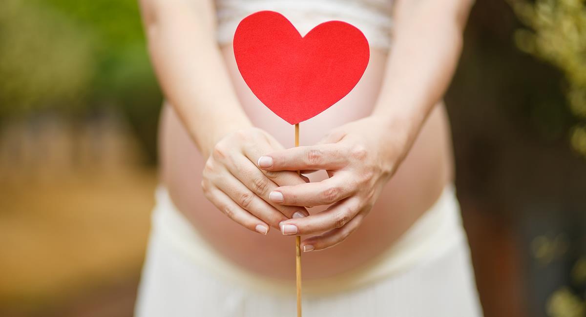 Un bon développement est dû au fait que le fœtus reçoit plus de sang de la mère. Photo: Pixabay